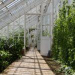 Sie möchten einen Wintergarten bauen? Lesen Sie dies einmal durch: